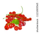 fresh  nutritious and tasty red ... | Shutterstock .eps vector #1121005565
