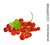 fresh  nutritious and tasty red ... | Shutterstock .eps vector #1121005568