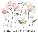 illustration of nature elements....   Shutterstock .eps vector #1121083646