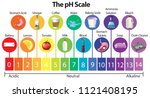 the science ph scale... | Shutterstock .eps vector #1121408195