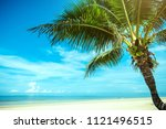 palm tree and tropical beach | Shutterstock . vector #1121496515