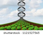 gmo farming and agricultural... | Shutterstock . vector #1121527565