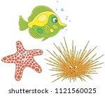 long spine sea urchin  a... | Shutterstock .eps vector #1121560025