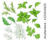 vector illustration set of... | Shutterstock .eps vector #1121614625