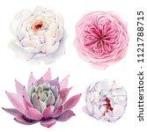 handpainted watercolor flowers... | Shutterstock . vector #1121788715