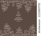 background with moringa  plant... | Shutterstock .eps vector #1121835752