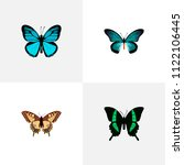 set of moth realistic symbols... | Shutterstock .eps vector #1122106445