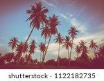 beautiful outdoor view with... | Shutterstock . vector #1122182735