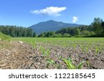 low angle view of farm land... | Shutterstock . vector #1122185645