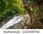 tropical forest in rainy season ... | Shutterstock . vector #1122430742