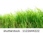 green grass isolated on white... | Shutterstock . vector #1122644222