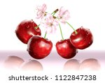 cherries and flower on white... | Shutterstock .eps vector #1122847238
