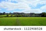 the lush green field of grass... | Shutterstock . vector #1122908528