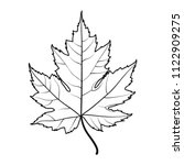 Realistic Maple Leaf Line...