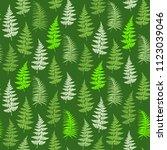 fern frond herbs  tropical... | Shutterstock .eps vector #1123039046