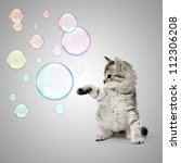 Stock photo kitten playing with soap bubbles over grey background 112306208