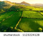 aerial view of endless lush... | Shutterstock . vector #1123224128