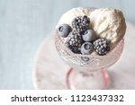 vanilla ice cream with fozen... | Shutterstock . vector #1123437332