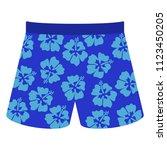 blue swim shorts   blue swim... | Shutterstock .eps vector #1123450205