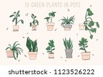 collection of green plants in...   Shutterstock .eps vector #1123526222