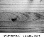 teak wood  tectona grandis ... | Shutterstock . vector #1123624595