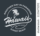 hawaii vintage t shirt design... | Shutterstock .eps vector #1123675292