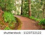 madeiral  camacha  portugal  ... | Shutterstock . vector #1123722122
