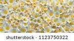 Chamomile Flowers. Chamomile...