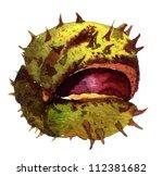 Little Open Chestnut