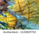 amazing colorful texture of... | Shutterstock . vector #1123829732