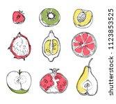vector illustration of farm... | Shutterstock .eps vector #1123853525