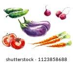 vegetable set with eggplants ... | Shutterstock . vector #1123858688