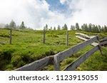 lush green high altitude summer ... | Shutterstock . vector #1123915055