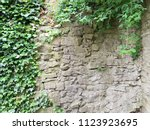 Ivy And The Ancient Stone Wall