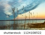 backwater landscape at the... | Shutterstock . vector #1124108522