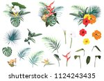 tropical flowers  palm leaves ... | Shutterstock .eps vector #1124243435