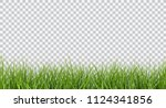 vector bright green realistic... | Shutterstock .eps vector #1124341856
