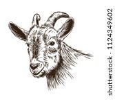 Vector Image Of A Goat's Head...