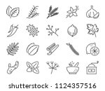 spices and herbs icon set.... | Shutterstock .eps vector #1124357516
