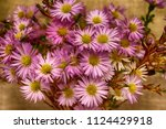 autumn bouquet of cultivar aster | Shutterstock . vector #1124429918
