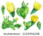 set of watercolor drawings ... | Shutterstock . vector #1124556248