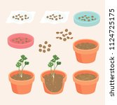 algorithm agriculture to plant...   Shutterstock .eps vector #1124725175