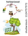 science food chain concept... | Shutterstock .eps vector #1124757572