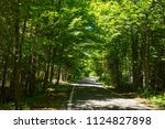 tunnel of trees drive in upper... | Shutterstock . vector #1124827898