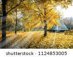 rays of the sun  going... | Shutterstock . vector #1124853005