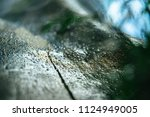 rainy drops on old weathered... | Shutterstock . vector #1124949005