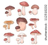 mushrooms  set. vector food... | Shutterstock .eps vector #112510232