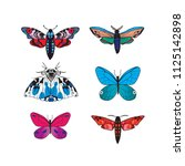 moth colorful collections | Shutterstock .eps vector #1125142898