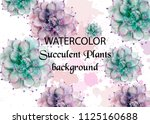 succulent plants watercolor.... | Shutterstock .eps vector #1125160688