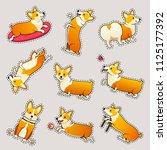 set of cute dogs breed welsh... | Shutterstock .eps vector #1125177392